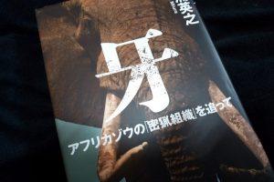 牙: アフリカゾウの「密猟組織」を追って